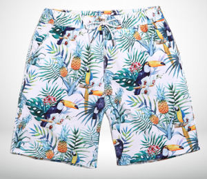 Art Fashionable Pelican Mens Pineapple Print ShortsPicture